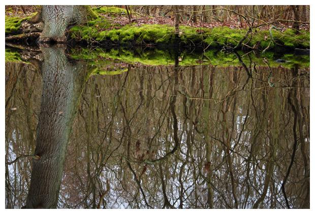 foto's, Donkere Duinen, Den Helder, Nederland
