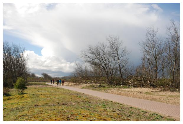 foto's, Nationaal park Zuid-Kennemerland, Noord-Holland, Nederland