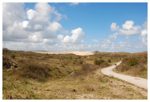 foto's, Nationaal Park Zuid-Kennemerland, Noord Holand