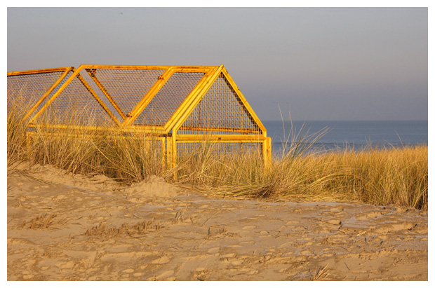 foto's, strand, zee, duinen, strandfoto´s