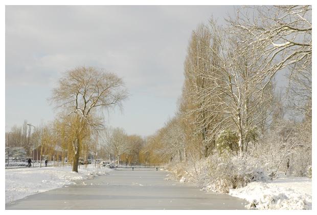 foto's, Wilgenlaan Schagen