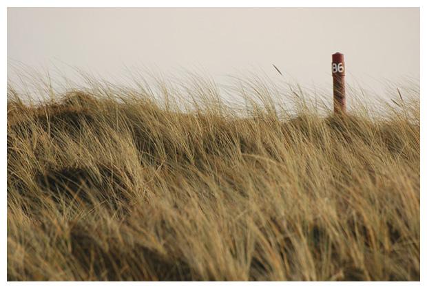 foto's, Zuidschinkeldijk, landschapsfoto´s, landschapsfoto's