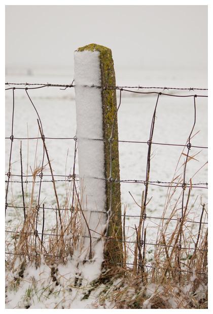 winter, winters, winterlandschap, winterlandschappen, winterslandschap