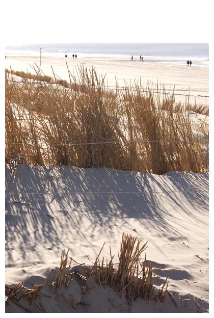 foto's, strand, zee,duinen, strandfoto´s, strandfoto's