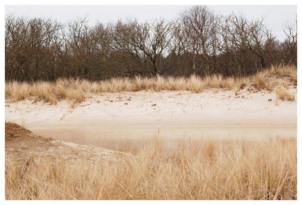 foto's, natuurgebied Zwanenwater, Callantsoog, Noord-Holland, Natuurmonumenten