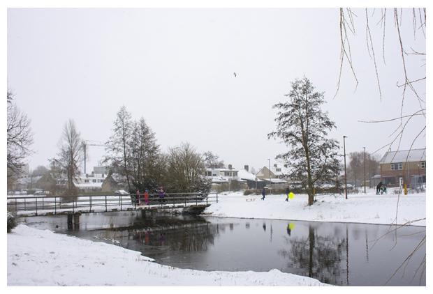 foto's, februari 2021