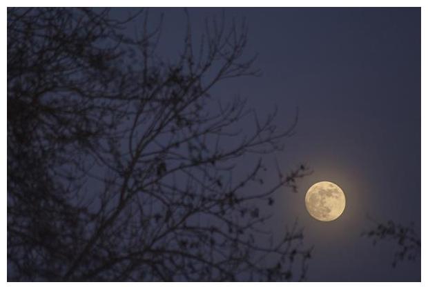 foto's, volle maan