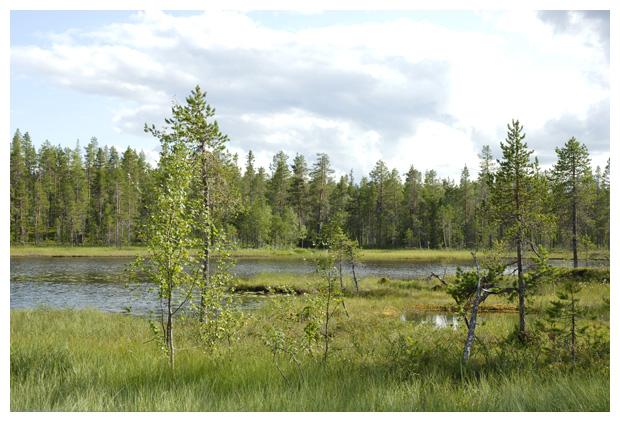 foto's, Storuman, Västerbottens län, Zweden