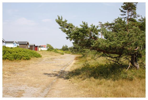 foto's, Skåne län, Zuid-Zweden, Zweden
