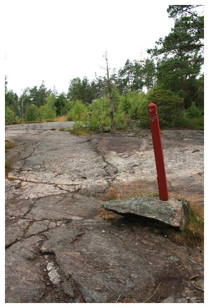 foto's, Rotstekeningen van Tanum, Västra götalands län, Västergötland, Zweden