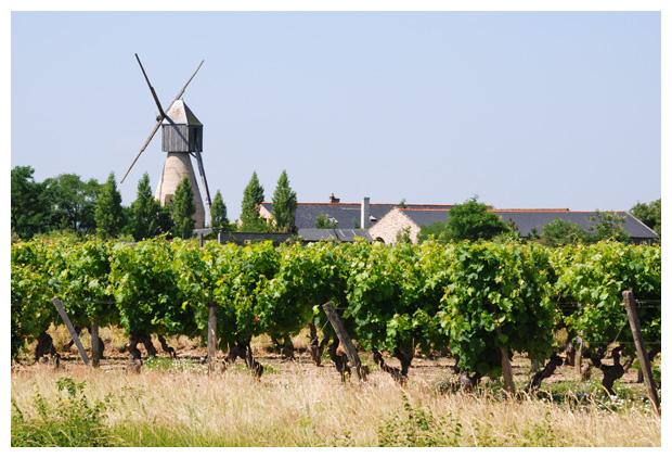 regio Pays de la Loire, departement  in frankrijk , france, steden, stad, vakantiefotos