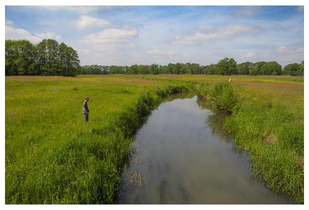 foto's, natuurgebied, Oudemolensche Diep, Drenthe, Nederland