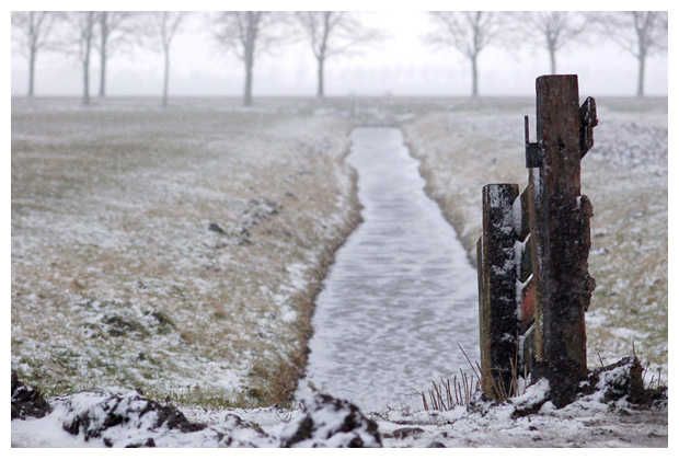 foto's, de Nes, Schagen, Noord Holland, Nederland