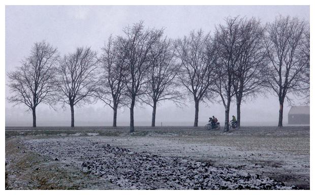 de nes gemeente schagen noord holland, landschap, landschappen, landsschappen, landschaps, landschapfoto