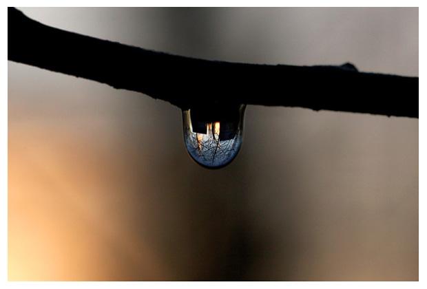 druppel, druppels, druppelfoto´s, regen, regendruppels