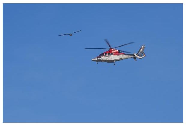 foto´s, helikopter, heli