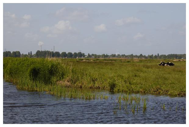 foto's, Natuurgebied Wormer en Jisperveld, Noord-Holland