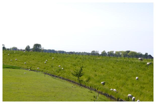 foto's, Westfriese Omringdijk, Schagen, Noord-Holland