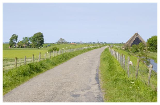 natuurfoto's, stad, schagen, noord holland