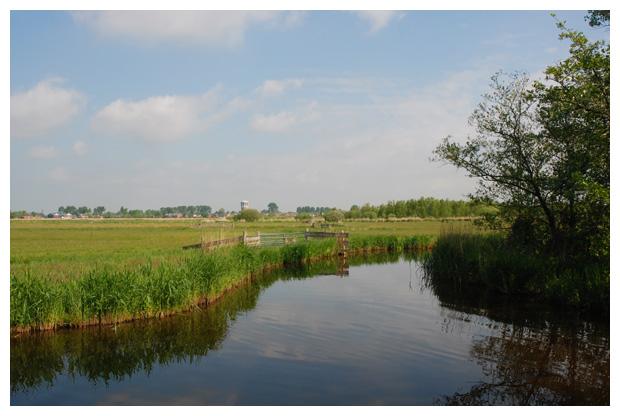 foto´s, natuurgebied in de Zaanstreek