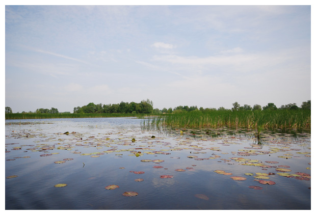 foto's, Nationaal Park Weerribben-Wieden, Overijssel