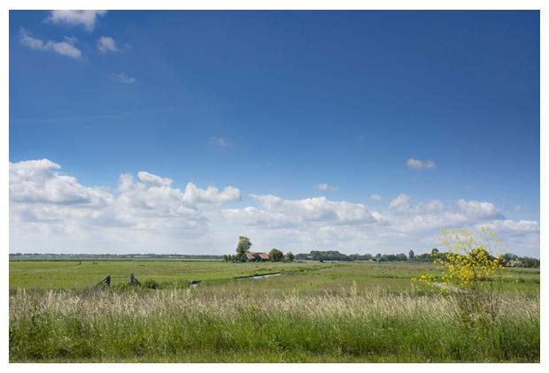 foto's, Natuurgebied Braakpolder, Aartswoud, Landschap Noord Holland