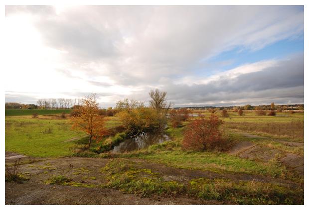 foto's, natuurgebied, Uiterwaardenpark Meinerswijk, Arnhem, Gelderland