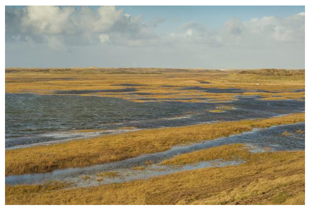 foto´s, Nationaal Park Duinen van Texel, Noord-Holland, Nederland