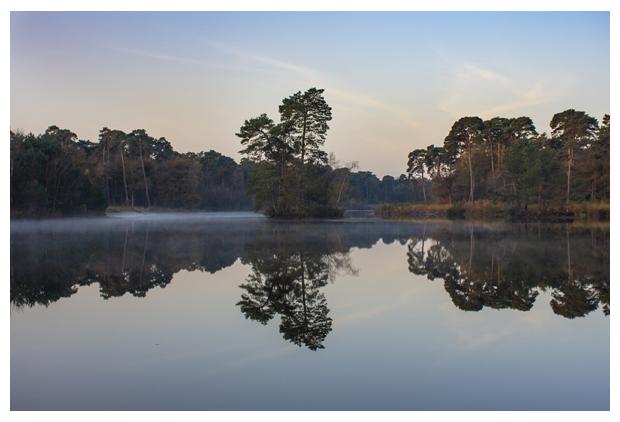 foto's, 2020, natuurgebied Oisterwijkse Bossen en Vennen, Noord-Brabant