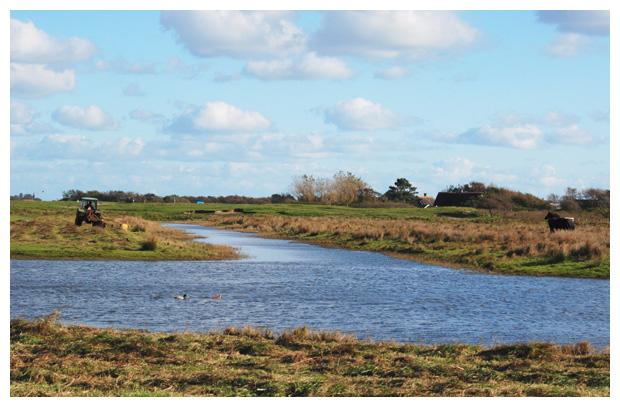 foto's, Natuurgebied Nollenland van Abbestede, Callantsoog en Groote Keeten, Landschap Noord Holland