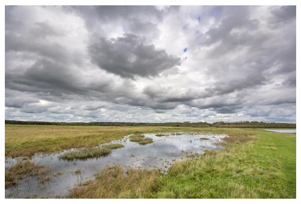 foto´s, natuurgebied Mariëndal, Den Helder