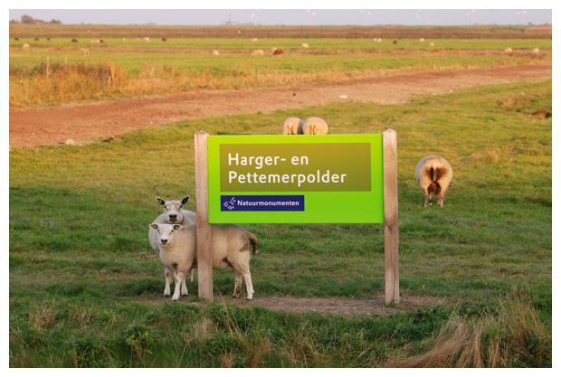 foto's, natuurgebied Harger-en Pettemerpolder