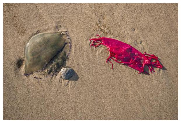 foto´s, Strandafval, afval uit zee, zwerfafval, ballonnen, plastic soep, zee