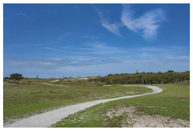 foto's, natuurgebied Grafelijkheidsduinen, Landschap Noord-Holland, Den Helder, Nederland