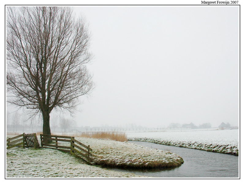 wit, witte, winter, winters, winterwallpaper, winterwallpapers